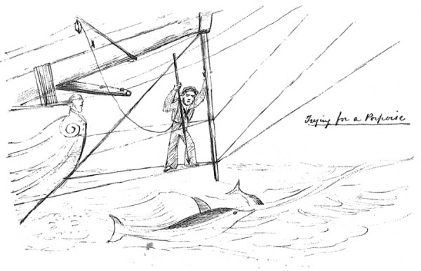 1849 sketch of a sailor trying to catch a porpoise while standing on the bowsprit of the ship